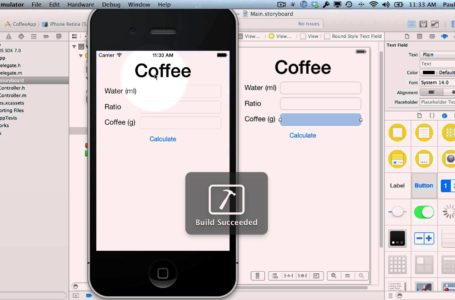How to Make Your First iPhone App