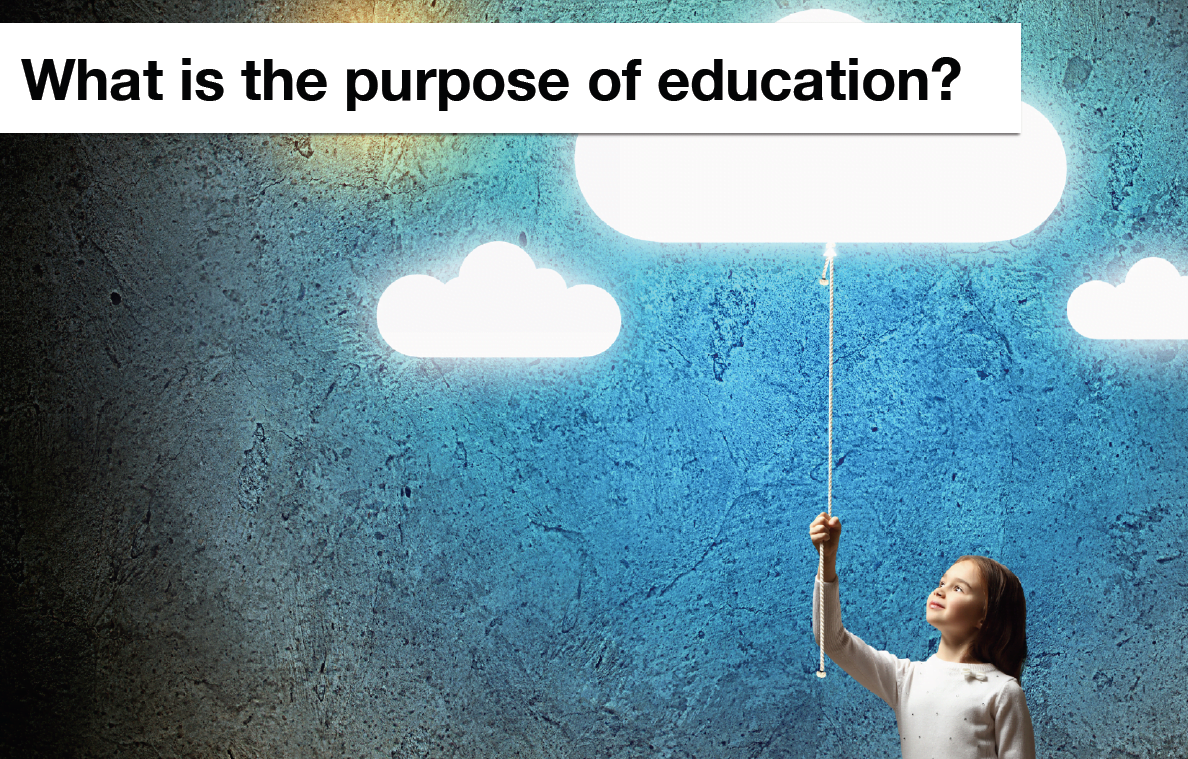 exploring the real purpose of our modern education The vastly different work and education experiences of safety professionals combine with a confused role expectation in modern organizations (provan et al, 2017) perhaps, the safety profession hasn't yet found its place or role in their organization.