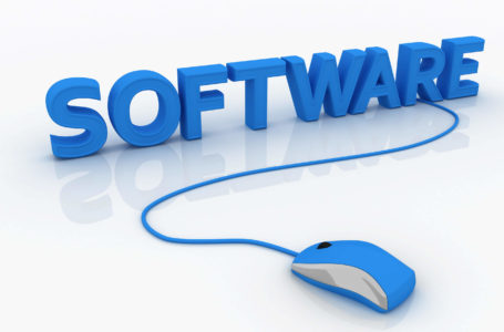 Overview of Software Patenting