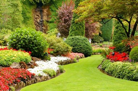 5 Great Tips to Hire the Best Landscape Contractor in the City