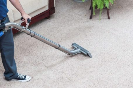 Things to Look For In Carpet Cleaning Services